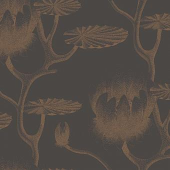 95/4021, Contemporary Restyled, Cole & Son