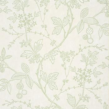 0291WRSHOOT, Archive Trails II, Little Greene